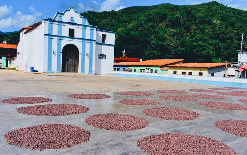 VENEZUELA – CHUAO ベネズエラ - チュアオ