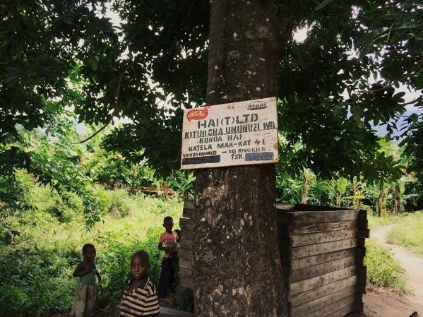 TANZANIA タンザニア
